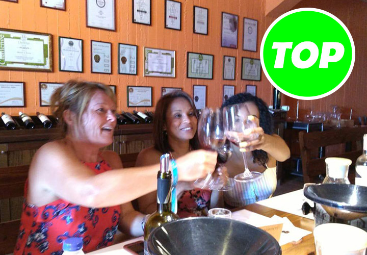 **Wine Tasting and Pottery